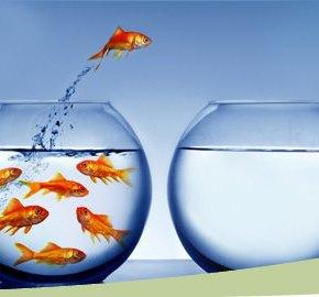 Conheça os atributos e competências dos empreendedores desucesso